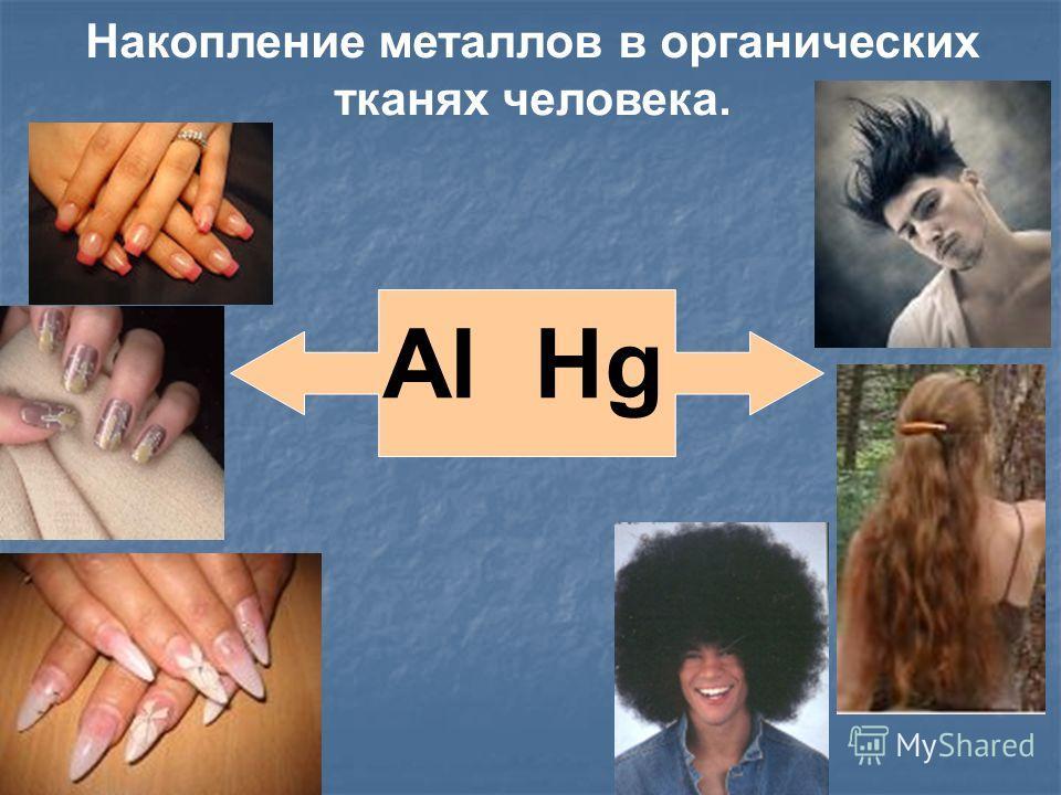 Накопление металлов в органических тканях человека. Al Hg