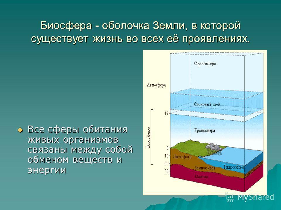 Биосфера - оболочка Земли, в которой существует жизнь во всех её проявлениях. Все сферы обитания живых организмов связаны между собой обменом веществ и энергии Все сферы обитания живых организмов связаны между собой обменом веществ и энергии