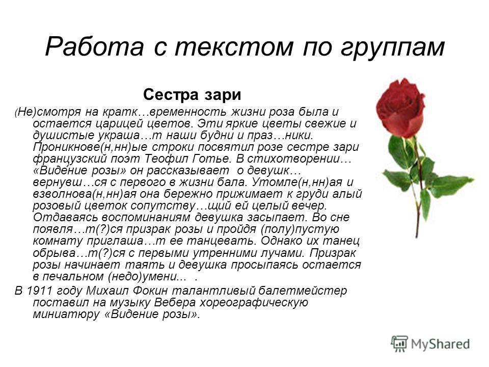 Работа с текстом по группам Сестра зари ( Не)смотря на кратк…временность жизни роза была и остается царицей цветов. Эти яркие цветы свежие и душистые украша…т наши будни и праз…ники. Проникнове(н,нн)ые строки посвятил розе сестре зари французский поэ