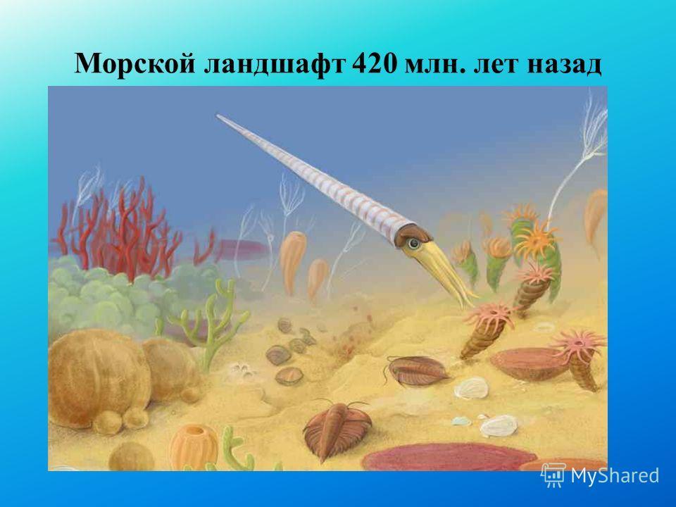 Морской ландшафт 420 млн. лет назад