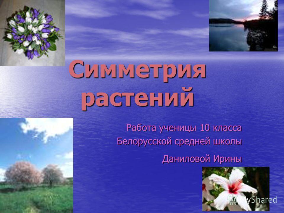 Симметрия растений Работа ученицы 10 класса Белорусской средней школы Даниловой Ирины