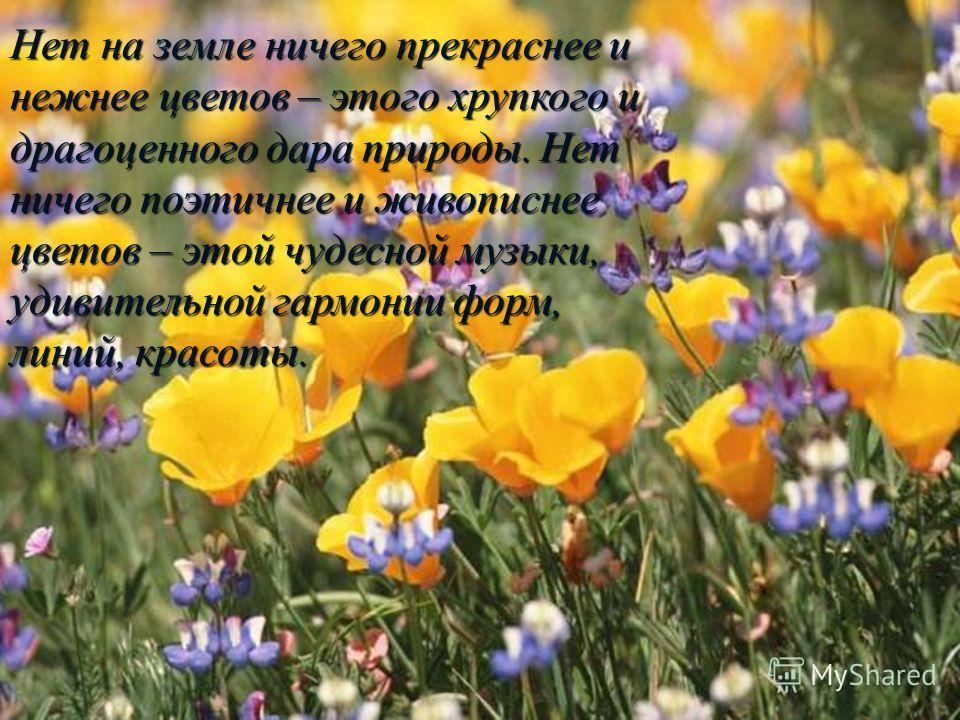 Нет на земле ничего прекраснее и нежнее цветов – этого хрупкого и драгоценного дара природы. Нет ничего поэтичнее и живописнее цветов – этой чудесной музыки, удивительной гармонии форм, линий, красоты.