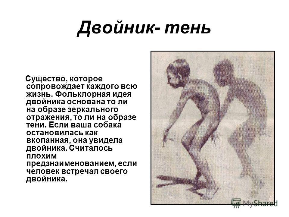 Двойник- тень Существо, которое сопровождает каждого всю жизнь. Фольклорная идея двойника основана то ли на образе зеркального отражения, то ли на образе тени. Если ваша собака остановилась как вкопанная, она увидела двойника. Считалось плохим предзн