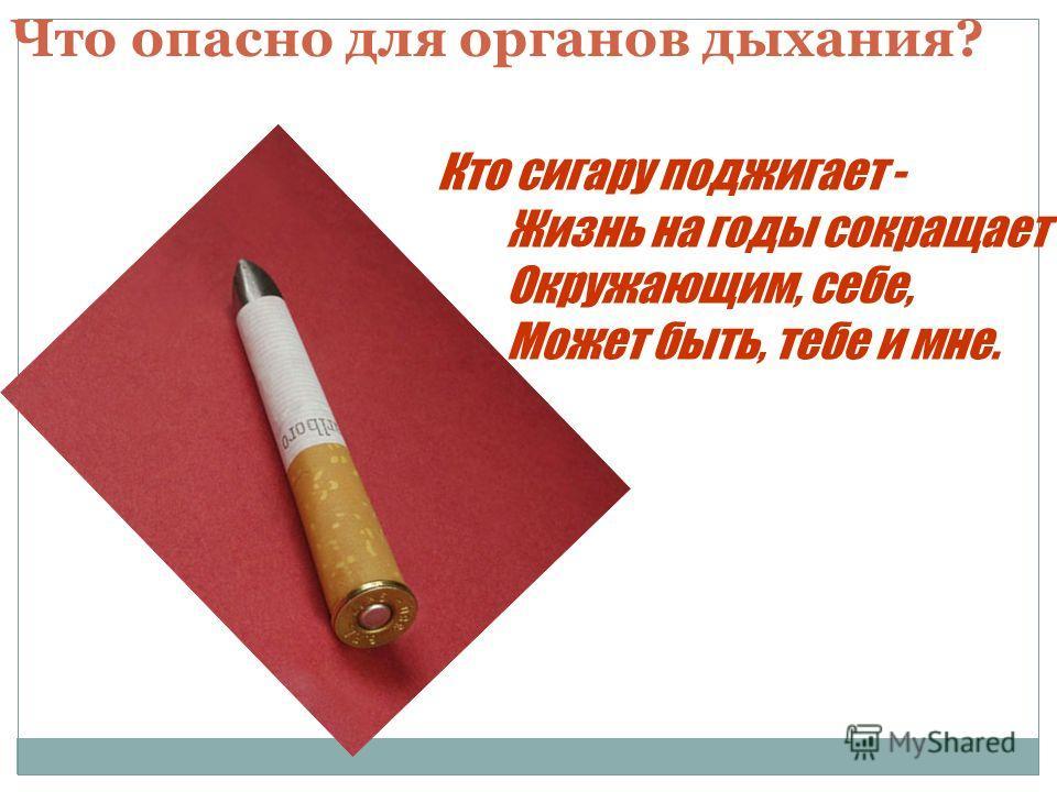 Кто сигару поджигает - Жизнь на годы сокращает Окружающим, себе, Может быть, тебе и мне. Что опасно для органов дыхания?