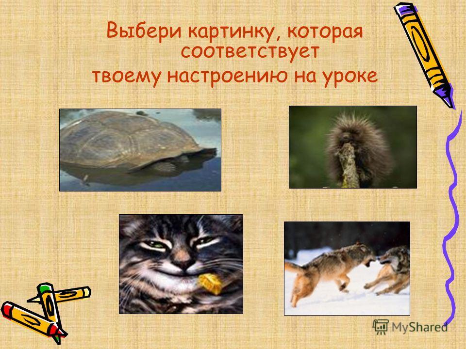 Выбери картинку, которая соответствует твоему настроению на уроке