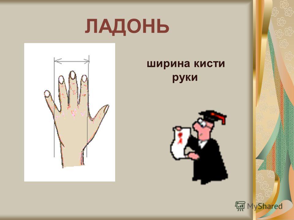 КОСАЯ САЖЕНЬ Расстояние между концами вытянутой руки и противоположной стопы