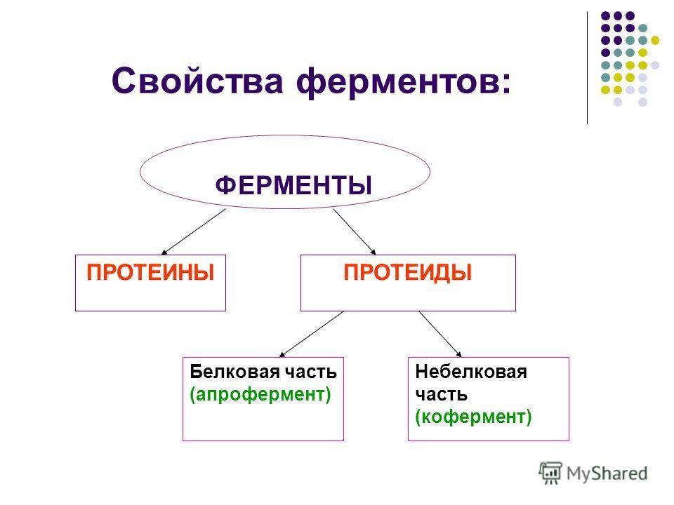 ФЕРМЕНТЫ ПРОТЕИНЫПРОТЕИДЫ Белковая часть (апрофермент) Небелковая часть (кофермент) Свойства ферментов: