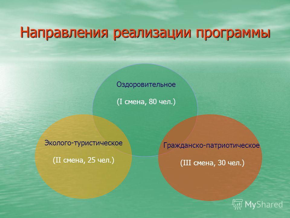 Направления реализации программы Оздоровительное (I смена, 80 чел.) Гражданско- патриотическое (III смена, 30 чел.) Эколого- туристическое (II смена, 25 чел.)
