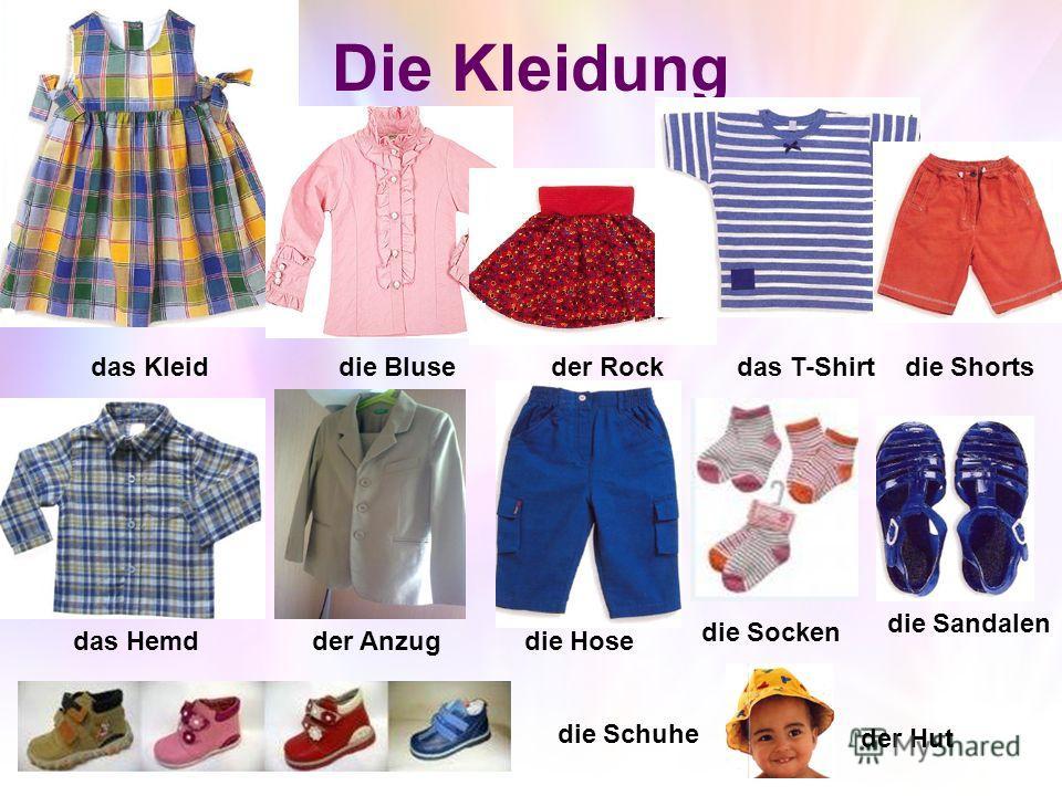 Die Kleidung das Kleiddie Bluseder Rockdas T-Shirtdie Shorts das Hemdder Anzugdie Hose die Socken die Sandalen die Schuhe der Hut