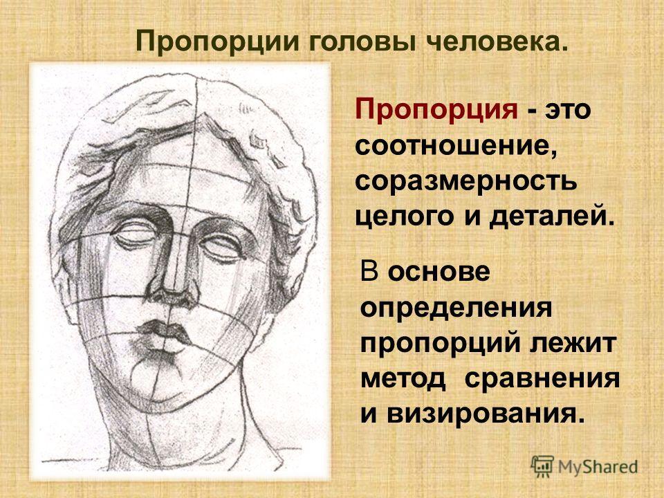 Пропорция - это соотношение, соразмерность целого и деталей. Пропорции головы человека. В основе определения пропорций лежит метод сравнения и визирования.