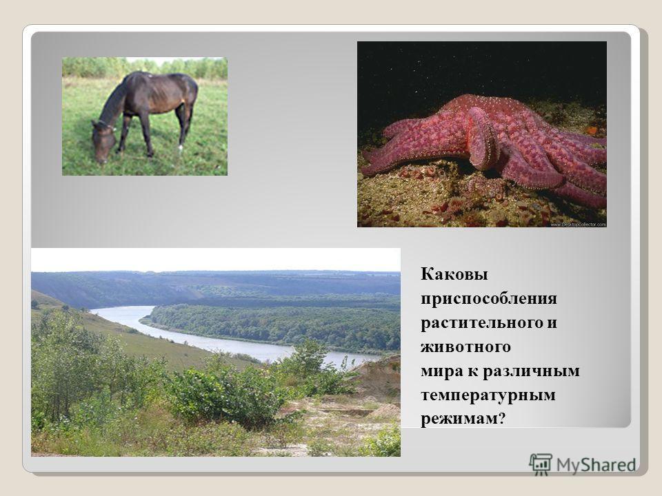 Каковы приспособления растительного и животного мира к различным температурным режимам ?