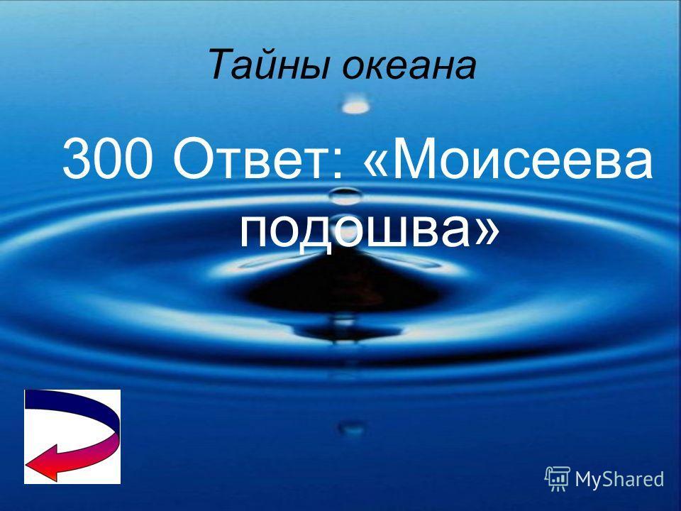 Тайны океана 200 Ответ: Берингов