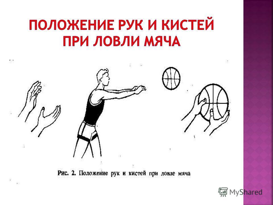 техника ловли мяча баскетбол конспект урока