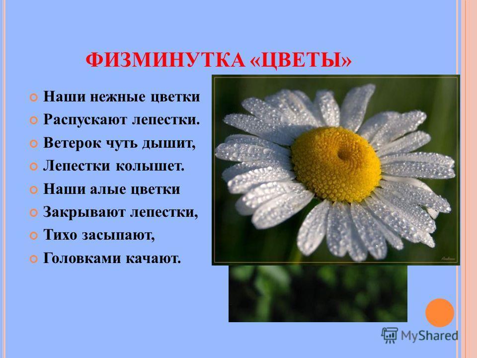 ФИЗМИНУТКА «ЦВЕТЫ» Наши нежные цветки Распускают лепестки. Ветерок чуть дышит, Лепестки колышет. Наши алые цветки Закрывают лепестки, Тихо засыпают, Головками качают.