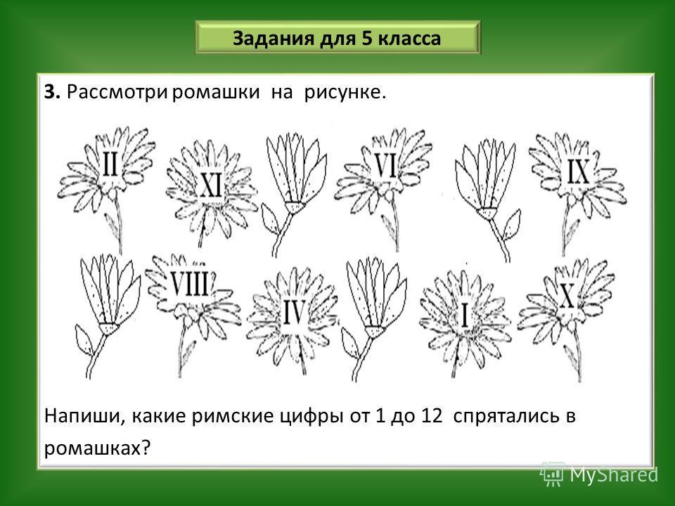Задания для 5 класса 3. Рассмотри ромашки на рисунке. Напиши, какие римские цифры от 1 до 12 спрятались в ромашках?