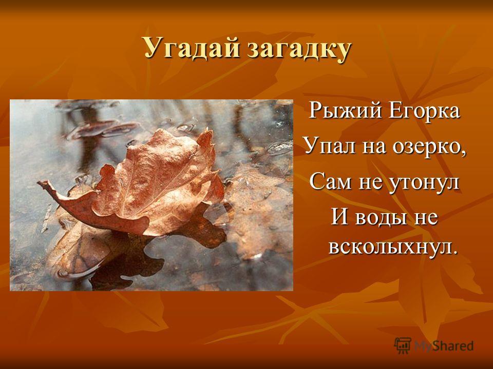 Угадай загадку Рыжий Егорка Упал на озерко, Сам не утонул И воды не всколыхнул.
