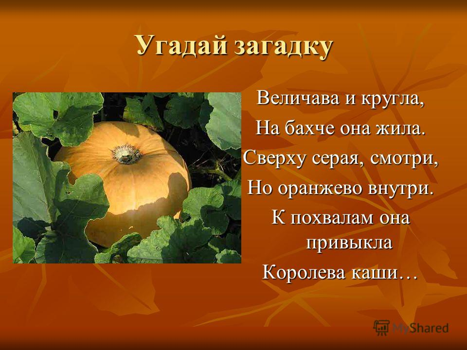 Угадай загадку Величава и кругла, На бахче она жила. Сверху серая, смотри, Но оранжево внутри. К похвалам она привыкла Королева каши…