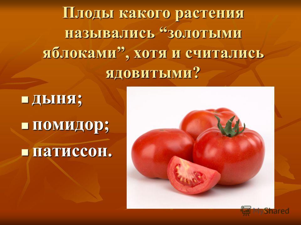 Плоды какого растения назывались золотыми яблоками, хотя и считались ядовитыми? дыня; дыня; помидор; помидор; патиссон. патиссон.