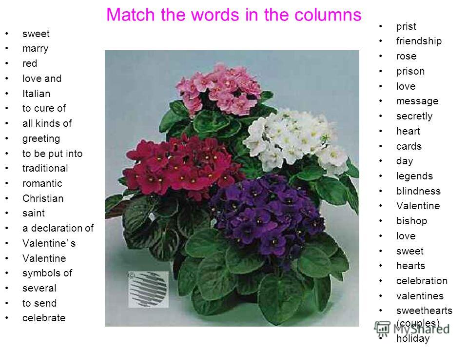 Match the words in the columns sweet marry red love and Italian to cure of all kinds of greeting to be put into traditional romantic Christian saint a declaration of Valentine s Valentine symbols of several to send celebrate prist friendship rose pri