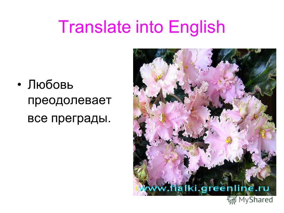 Translate into English Любовь преодолевает все преграды.