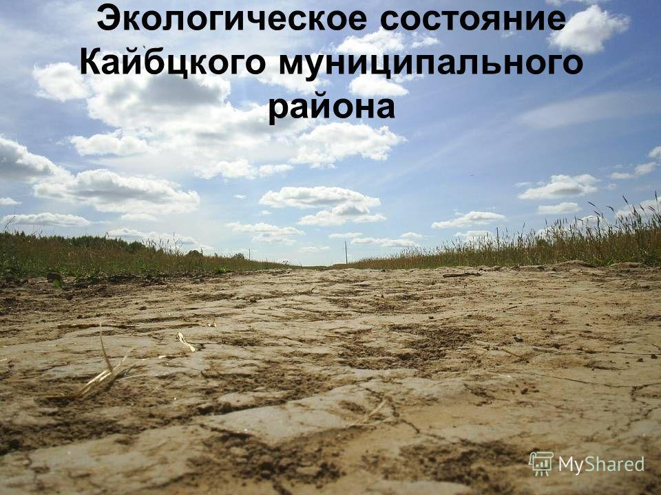 Экологическое состояние Кайбцкого муниципального района