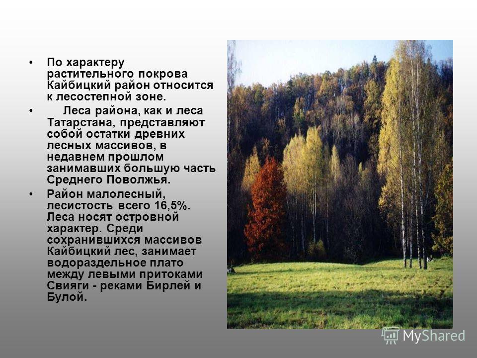 По характеру растительного покрова Кайбицкий район относится к лесостепной зоне. Леса района, как и леса Татарстана, представляют собой остатки древних лесных массивов, в недавнем прошлом занимавших большую часть Среднего Поволжья. Район малолесный,