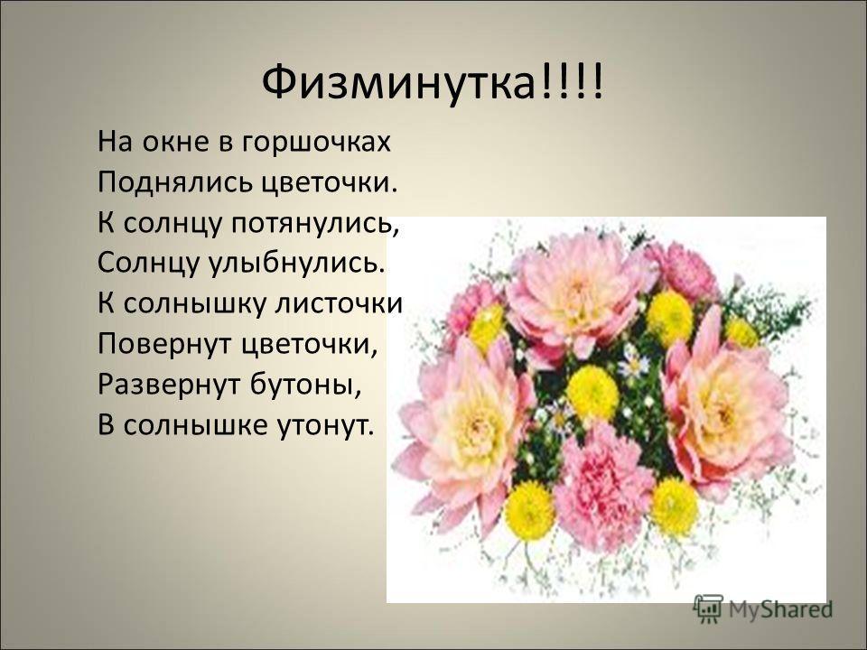 Физминутка!!!! На окне в горшочках Поднялись цветочки. К солнцу потянулись, Солнцу улыбнулись. К солнышку листочки Повернут цветочки, Развернут бутоны, В солнышке утонут.
