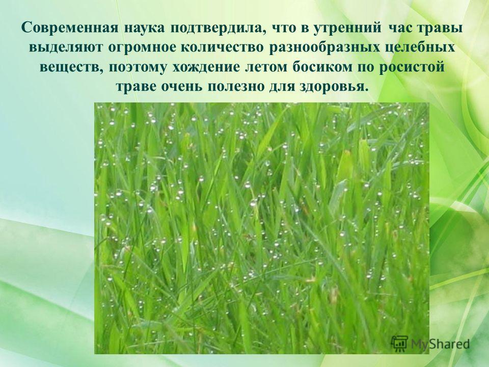 Современная наука подтвердила, что в утренний час травы выделяют огромное количество разнообразных целебных веществ, поэтому хождение летом босиком по росистой траве очень полезно для здоровья.