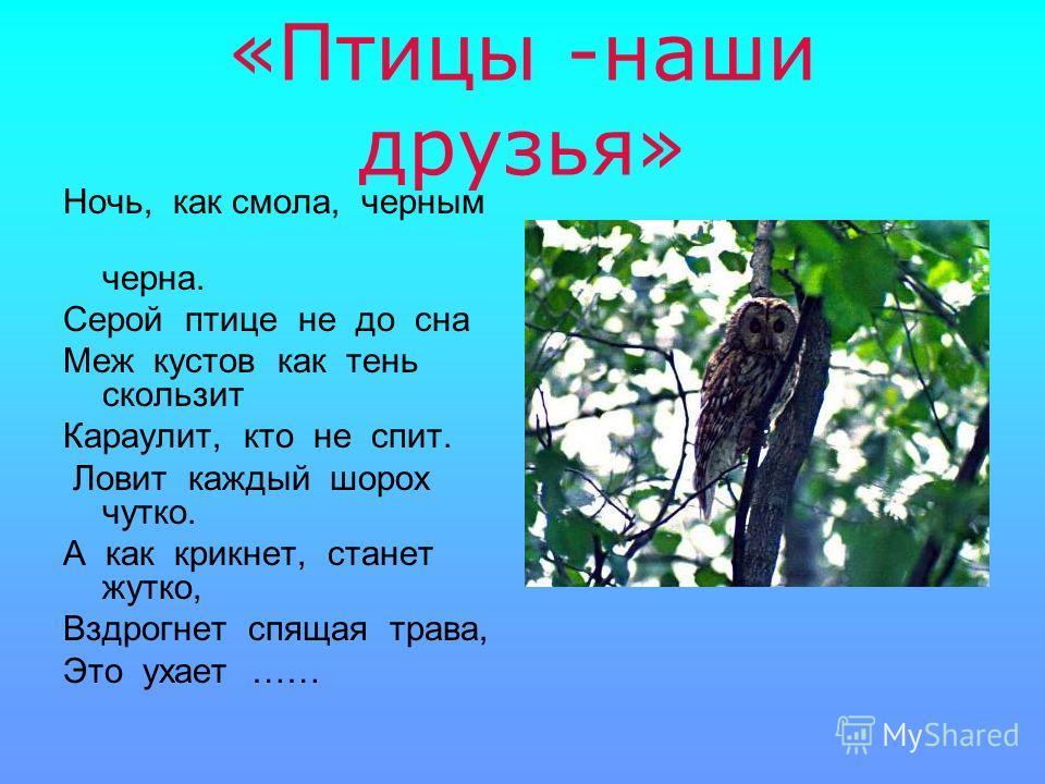 «Птицы -наши друзья» Ночь, как смола, черным черна. Серой птице не до сна Меж кустов как тень скользит Караулит, кто не спит. Ловит каждый шорох чутко. А как крикнет, станет жутко, Вздрогнет спящая трава, Это ухает ……