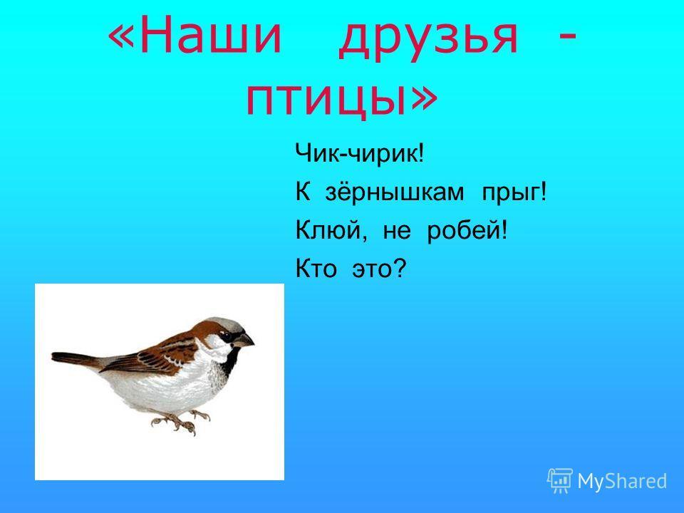 «Наши друзья - птицы» Чик-чирик! К зёрнышкам прыг! Клюй, не робей! Кто это?