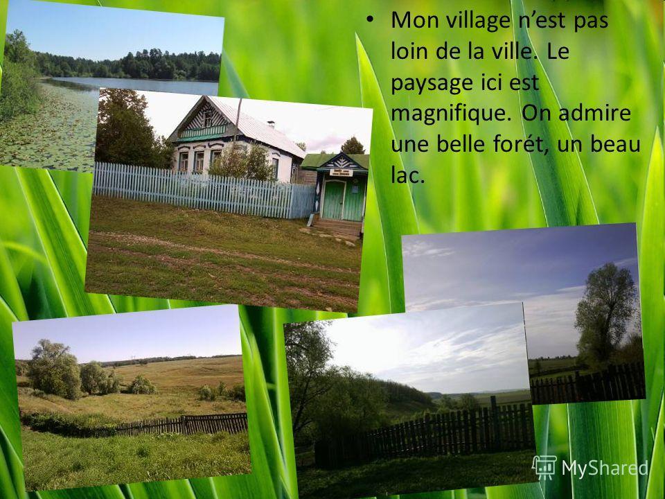 Mon village nest pas loin de la ville. Le paysage ici est magnifique. On admire une belle forét, un beau lac.