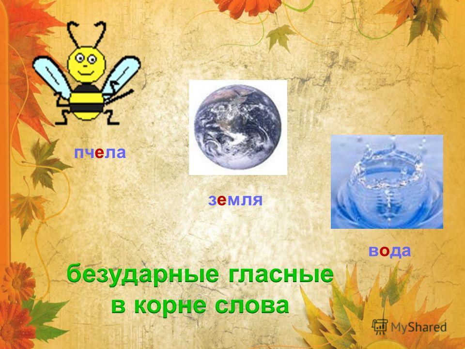 пчела вода земля