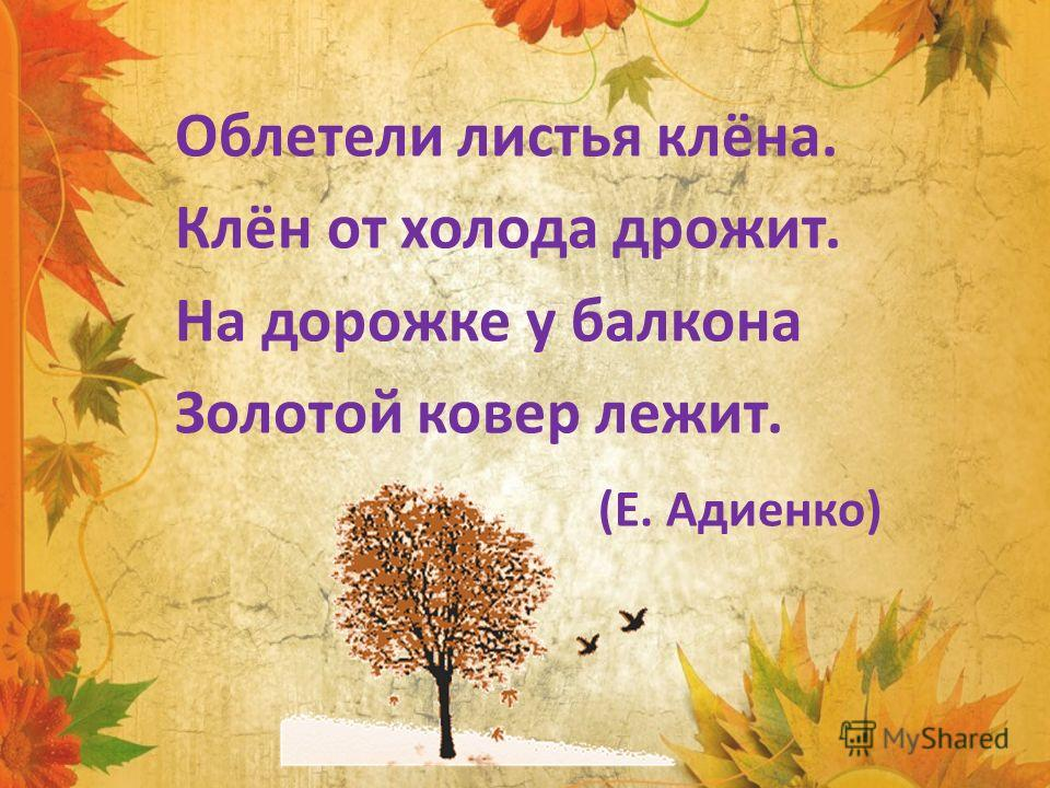 Облетели листья клёна. Клён от холода дрожит. На дорожке у балкона Золотой ковер лежит. (Е. Адиенко)