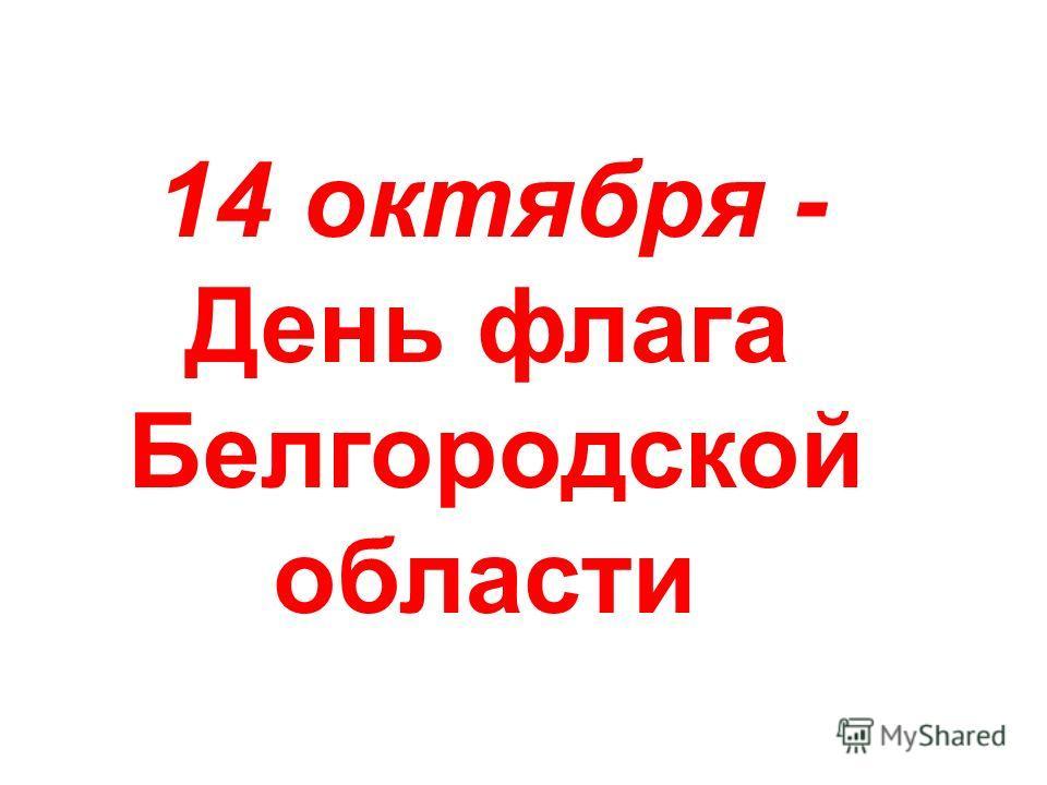 14 октября - День флага Белгородской области