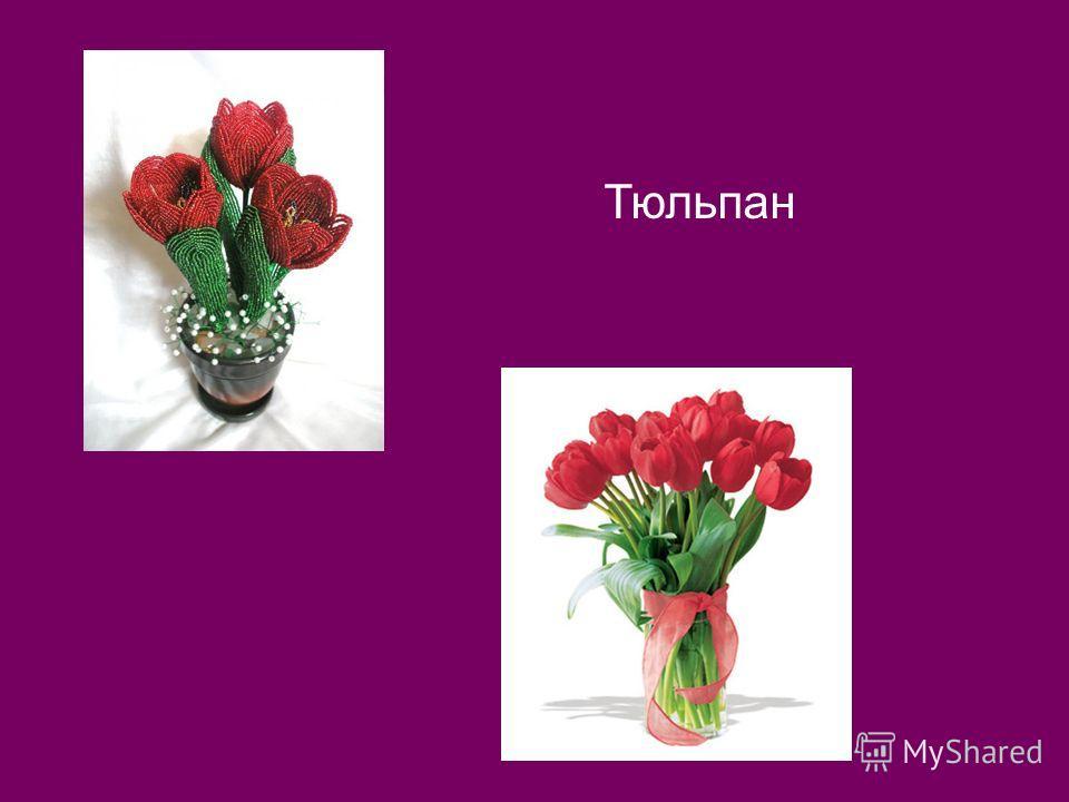 7. По вертикали: Замечательный цветок, Словно яркий огонёк. Пышный, важный, словно пан, Нежный бархатный …