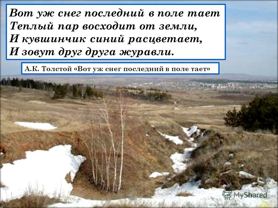 Вот уж снег последний в поле тает Теплый пар восходит от земли, И кувшинчик синий расцветает, И зовут друг друга журавли. А.К. Толстой «Вот уж снег последний в поле тает»