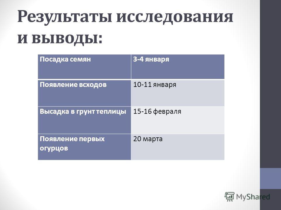 Результаты исследования и выводы: Посадка семян3-4 января Появление всходов10-11 января Высадка в грунт теплицы15-16 февраля Появление первых огурцов 20 марта