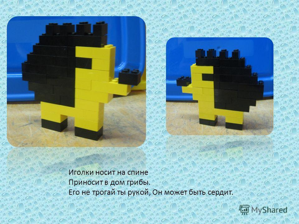 Иголки носит на спине Приносит в дом грибы. Его не трогай ты рукой, Он может быть сердит.