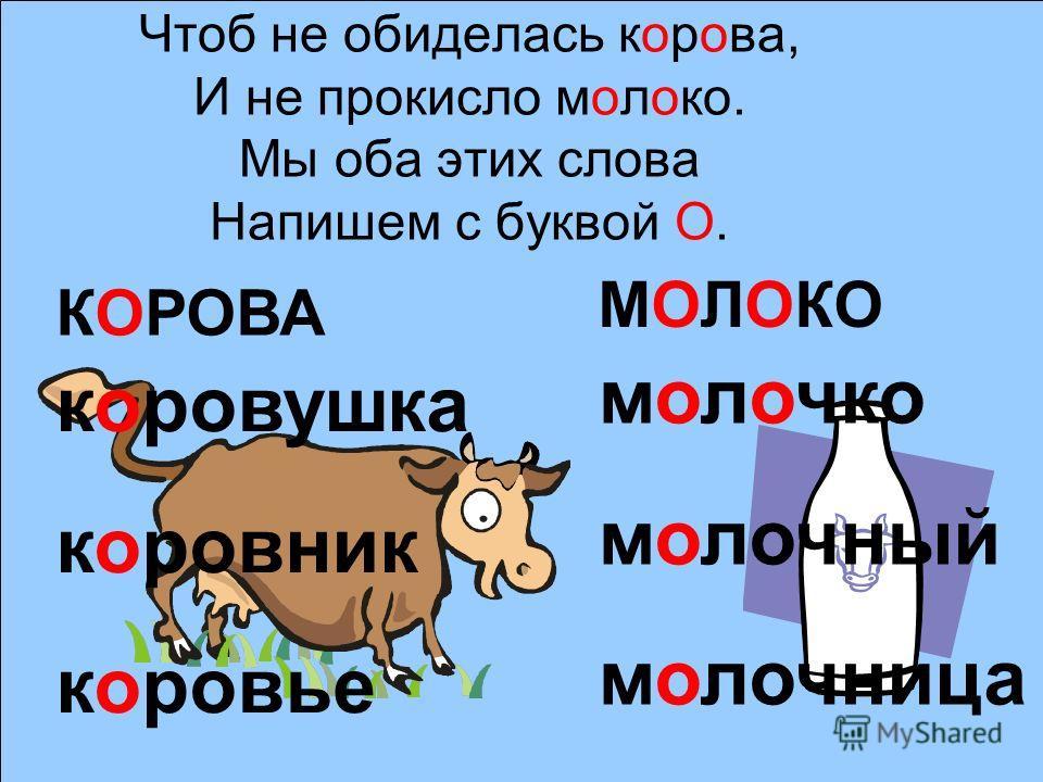 Чтоб не обиделась корова, И не прокисло молоко. Мы оба этих слова Напишем с буквой О. КОРОВА МОЛОКО коровушка коровник коровье молочко молочный молочница