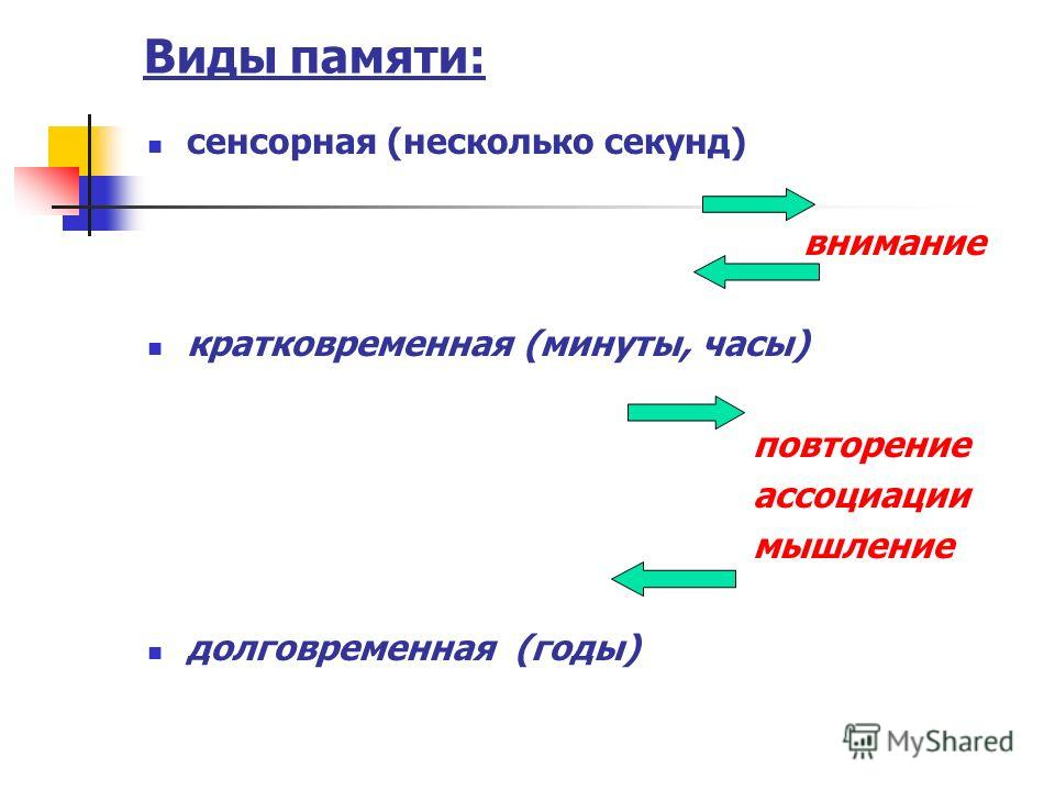Виды памяти: сенсорная (несколько секунд) внимание кратковременная (минуты, часы) повторение ассоциации мышление долговременная (годы)