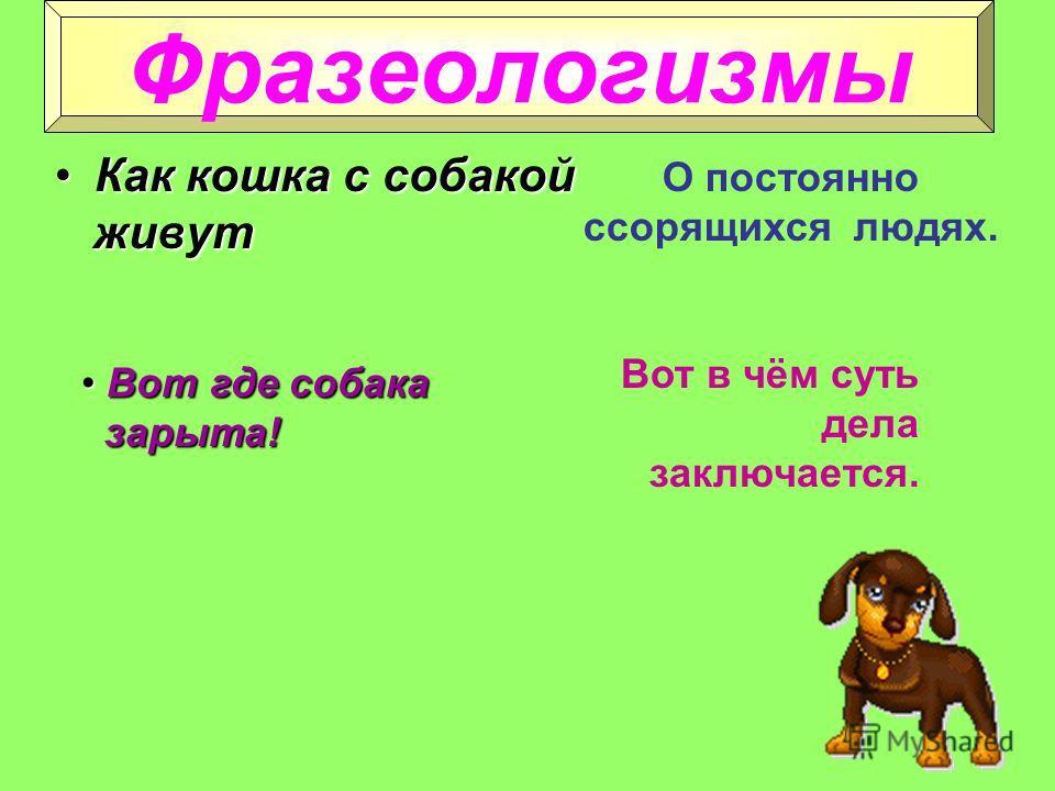 Однокоренные слова СобачатаСобачата СобачникСобачник СобачийСобачий СобачкаСобачка СобачонкаСобачонка СобаководСобаковод Синонимы пёс