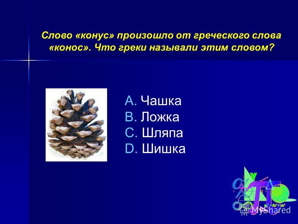 Слово «конус» произошло от греческого слова «конос». Что греки называли этим словом? A. Чашка B. Ложка C. Шляпа D. Шишка