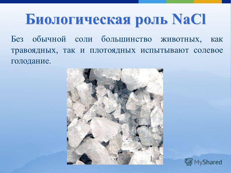 Без обычной соли большинство животных, как травоядных, так и плотоядных испытывают солевое голодание. Биологическая роль NaCl