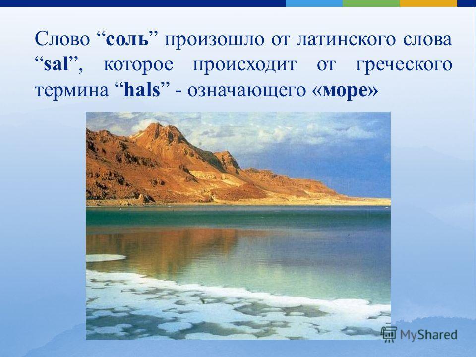 Слово соль произошло от латинского словаsal, которое происходит от греческого термина hals - означающего «море»