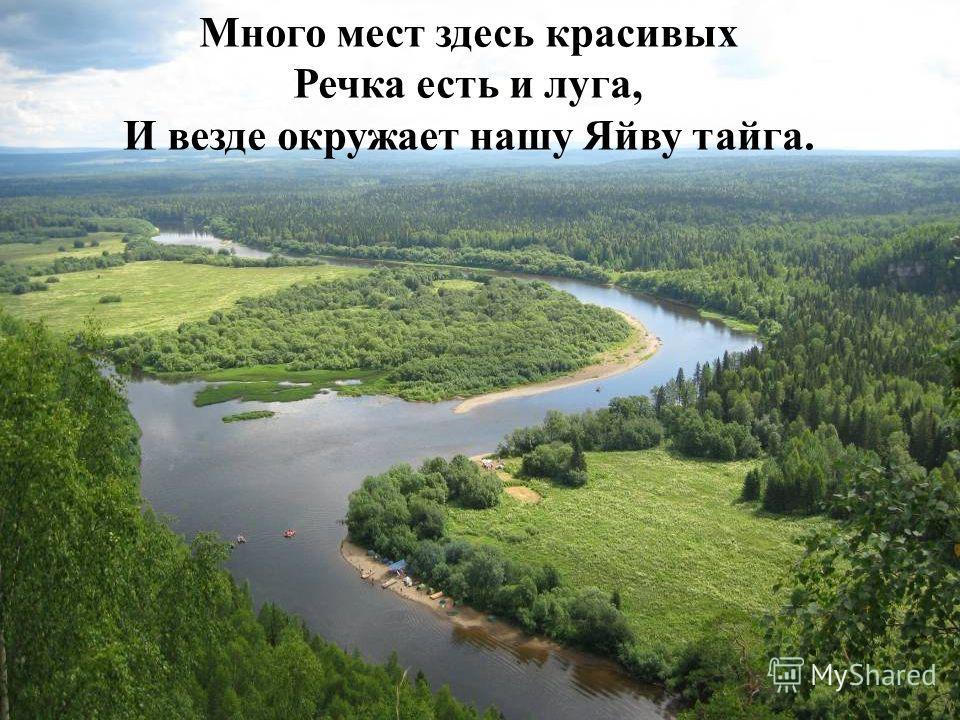 Много мест здесь красивых Речка есть и луга, И везде окружает нашу Яйву тайга.