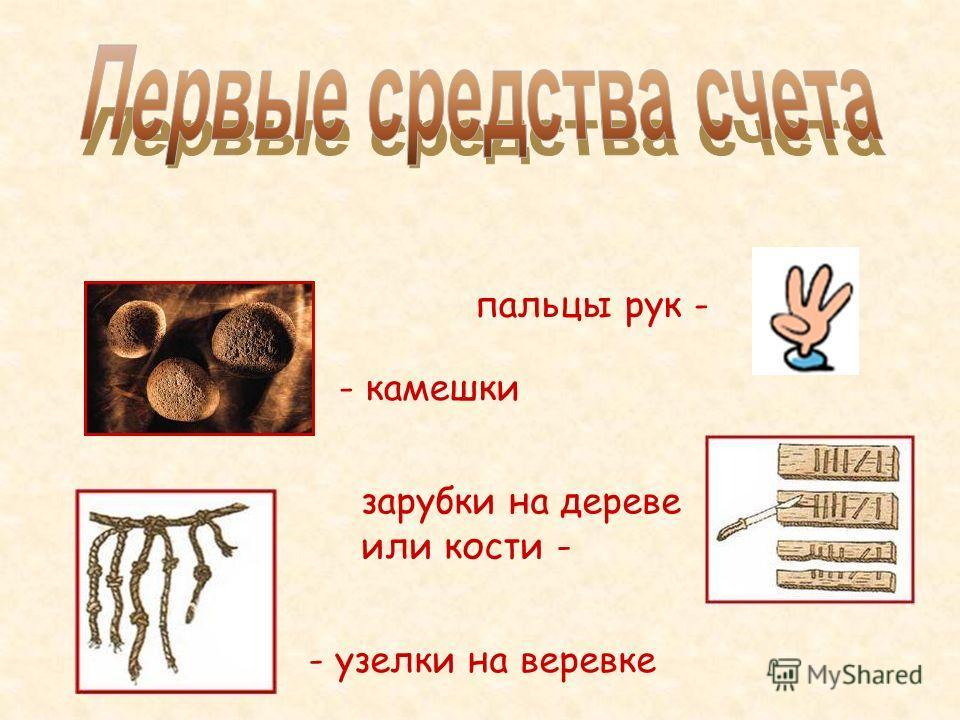 пальцы рук - - камешки зарубки на дереве или кости - - узелки на веревке