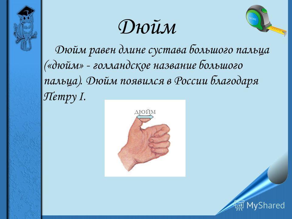Дюйм Дюйм равен длине сустава большого пальца («дюйм» - голландское название большого пальца). Дюйм появился в России благодаря Петру I. ДЮЙМ