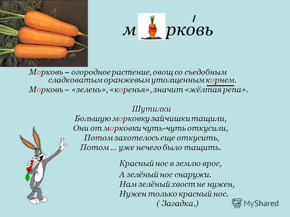м рковь Морковь – огородное растение, овощ со съедобным сладковатым оранжевым утолщенным корнем. Морковь – «зелень», «коренья», значит «жёлтая репа». Шутилки Большую морковку зайчишки тащили, Они от морковки чуть-чуть откусили, Потом захотелось еще о