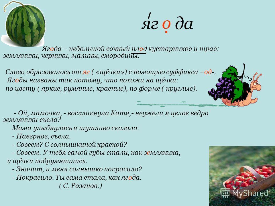 яг да Ягода – небольшой сочный плод кустарников и трав: земляники, черники, малины, смородины. Слово образовалось от яг ( «щёчки») с помощью суффикса –од-. Ягоды названы так потому, что похожи на щёчки: по цвету ( яркие, румяные, красные), по форме (