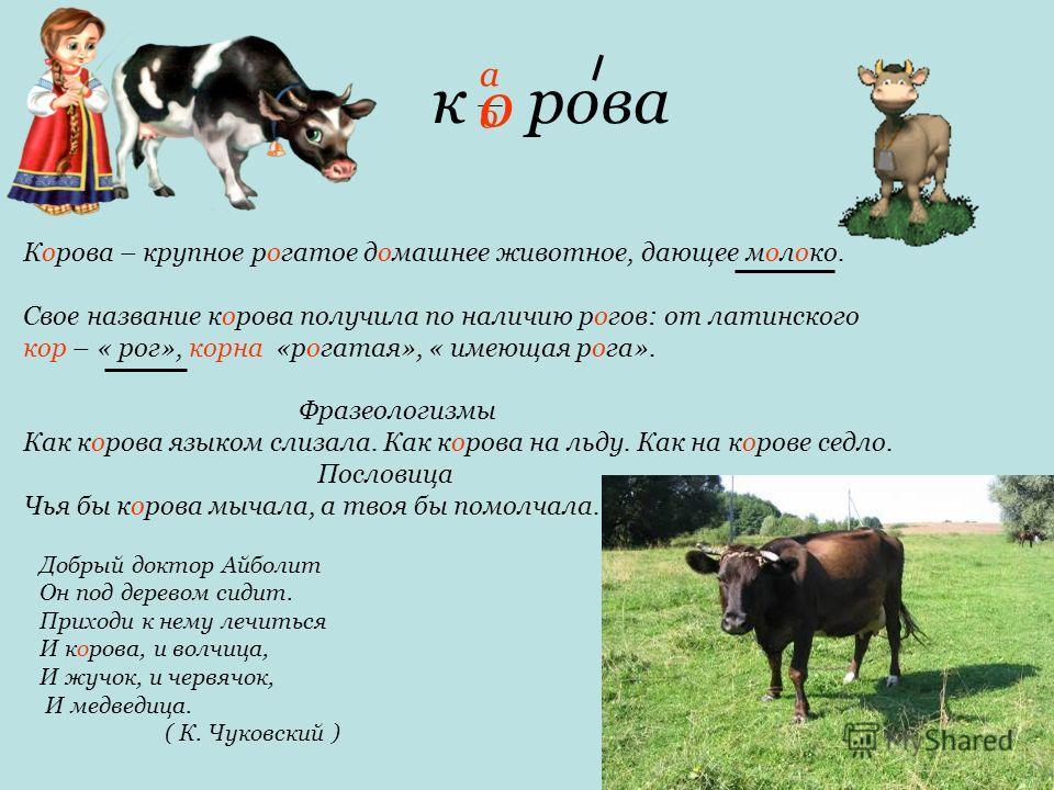 к рова Корова – крупное рогатое домашнее животное, дающее молоко. Свое название корова получила по наличию рогов: от латинского кор – « рог», корна «рогатая», « имеющая рога». Фразеологизмы Как корова языком слизала. Как корова на льду. Как на корове